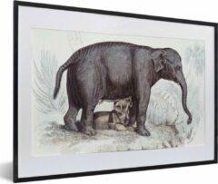 PosterMonkey Foto in lijst - Een illustratie van een olifant met een baby fotolijst zwart met witte passe-partout middel 60x40 cm - Poster in lijst (Wanddecoratie woonkamer / slaapkamer)