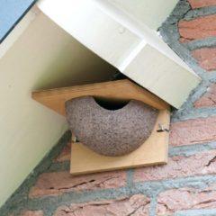 Grijze Vivara Kunstnest huiszwaluw enkel (ingang rechts)