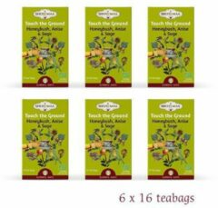 "Shoti Maa Elements ""Touch the Ground-La Terre"" Honeybush Anijs Salie BIO (6 doosjes)"
