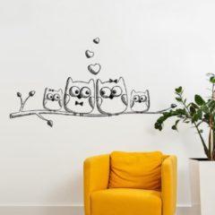 Zwarte Plakkers Schattige uilen familie op tak