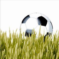 Duni servetten voetbal @ 20 st