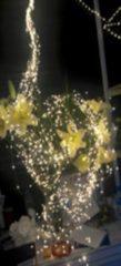 LED-Drahtstränge 125er, warmweiß FHS weiß