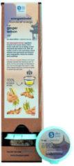 Shuyao Ginger Lemon Spenderbox 12+1 Tagesportionen Tee