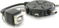 Zwarte DeLOCK USB 2.0 Adapter cable set Zwart kabeladapter/verloopstukje