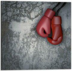 KuijsFotoprint Dibond - Rode Bokshandschoenen aan betonnen Muur - 50x50cm Foto op Aluminium (Met Ophangsysteem)