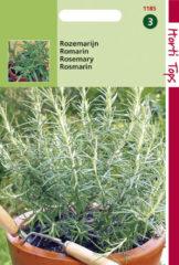 Groene Merkloos / Sans marque Hortitops Zaden - Rozemarijn