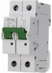 Groene Knopp Kopp Installatie Automaat 16A B-karakteristiek 1+N polig