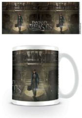 Fantastic Beasts And Where To Find Them FANTASTIC BEAST Harry Potter - Mug - 300 ml - Teaser