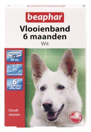 Afbeelding van Beaphar Vlooienband 6 Mnd Hond 65 cm - Anti vlooienmiddel - Wit