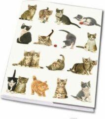 Bekking & Bitz Publishers Schrift A5: Franciens Katten, Francien van Westering
