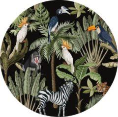 Groene Made on Friday - Behangcirkel Tropical Jungle Black 80x80cm - Zelfklevend behang met matte textiel uitstraling