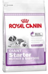 Royal Canin Giant Starter Mother and Babydog Hondenvoer 15 kg
