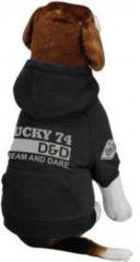 D&D Hondenjas Fashion Lucky74 grijs - L