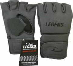 Legend Sports MMA/Bokszak handschoenen Legend Flow Mat Zwart XXS