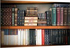 Groene KuijsFotoprint Dibond - Oude Boekenkast - 150x100cm Foto op Aluminium (Met Ophangsysteem)