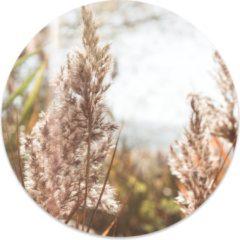 Beige Label2X Muurcirkel klein grass - Ø 20 cm - Forex (binnen)