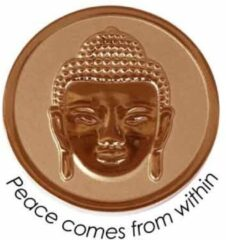 Quoins QMOZ-04-M-R Disk Peace comes from within rosekleurig Medium