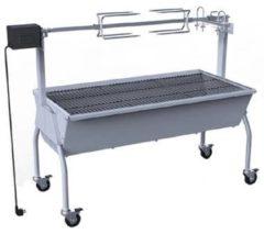 Zilveren VidaXL Draaispit barbecue met elektrische motor