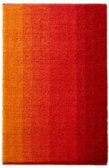 Rode Biobadkamermat, rood 60 x 100 cm