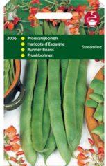Rode Hortitops Zaden - Pronkbonen Streamline (Roodbloeiers)