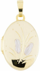 Gold Collection Glow Gouden Medaillon Ovaal 14 x 26 mm 245.0083.00