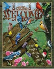 Desperate Enterprises Welcome - Place for the Birds. Metalen wandbord 31,5 x 40,5 cm.