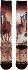 Bruine Ruiter sokken – paardrijsokken – kniekousen - Stapp Horse fotoprint - Paarden - maat 35/38