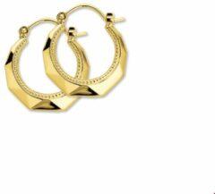 Goudkleurige SPARKLE14 The Jewelry Collection oorringen Lapide - Geelgoud (14 Krt.)