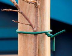 Nature Rubberband - Klim-En Geleide Artikel - 5.5x10x16.5 cm Groen 5 M