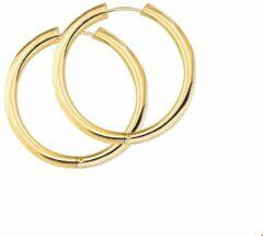 Gele Huiscollectie 4002468 Gouden Oorring rond 3 mm