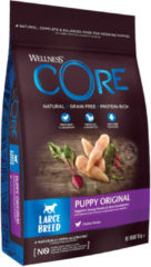 Wellness Core Grain Free Large Breed Puppy Kip - Hondenvoer - 10 kg