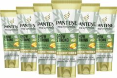 Pantene Grow Strong Met Bamboe En Biotine - Voordeelverpakking 6 x 160 ml - Conditioner