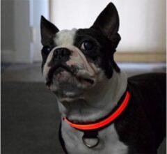 Merkloos / Sans marque LED Verlichte Hondenhalsband - Rood - Maat S - Veilig voor je hond in het donker