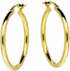 Goudkleurige Glow Gouden oorringen 2 mm breed x 24 mm ø 207.0020.24