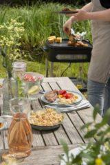 Grijze Fritel Barbecue met Deksel met afneembare tafelgrill voor Indoor BBQ 3256
