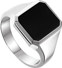 Quickjewels Huiscollectie Zilver The Jewelry Collection For Men Zegelring Onyx - Zilver