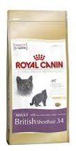ROYAL CANIN® Royal Canin British Shorthair Adult - Kattenvoer - 400 g