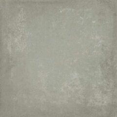 Baldocer Ceramica Baldocer Cerámica Vloer- en wandtegel Grafton Grey 120x120 cm Gerectificeerd betonlook Mat Grijs SW07310901-2