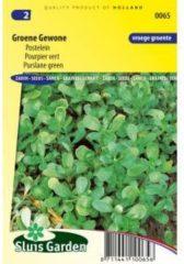 Sluis Garden Postelein zaden - Groene Gewone
