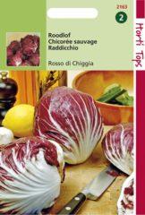 Hortitops Roodlof Cichorium intybus Radicchio Rosso Di Chioggia - Lof - 3gram