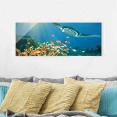 PPS. Imaging Glasbild - Korallenriff - Panorama... 30cm x 80cm