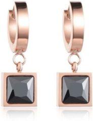 Roze Cilla Jewels Damesoorbellen met Monochrome Zirkonia