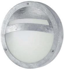 Zilveren EGLO Sevilla - Buitenverlichting - Wand/Plafondlamp - 1 Lichts - Zink