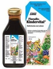 Salus Floradix kindervital (1 flesje van 250ml)