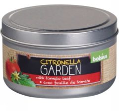 Bolsius Geurkaars Blik Citronella/Tomatenblad 24 Branduren Rood