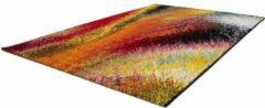 Lalee Esprit Vloerkleed 120x170 Regenboog 300