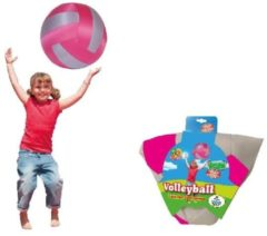 Summertime Volleybal Roze/Grijs 40cm