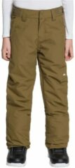 Quiksilver Estate Pants groen