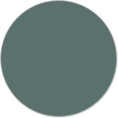 Beige Label2X Muurcirkel klein effen groen - Ø 30 cm - Forex (binnen)