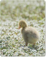 MousePadParadise Muismat Baby ganzen - Elegante baby gans muismat rubber - 19x23 cm - Muismat met foto
